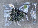 有機J野菜の冷凍青虫(モンシロチョウ)約2cm10g 真空パック 希少餌